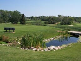 Camrose_golf_club_3